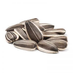 Striped Sunflower Jaguar Seeds