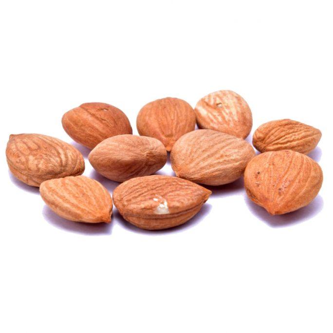 Apricot-kernels-bulgarian-nuts-ltd